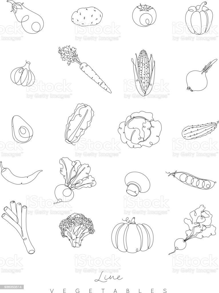 Pen line vegetables icons vector art illustration