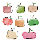 Vector illustration of a colorful, pencil drawing and watercolor painted apple fruit