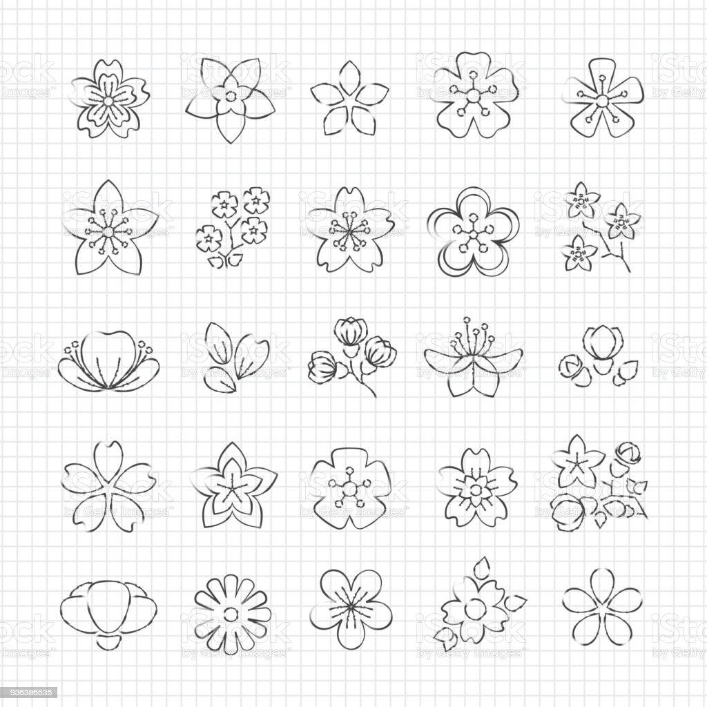Bleistiftzeichnung Blühen Blumen Stock Vektor Art Und Mehr Bilder