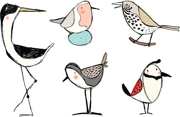 pencil sketch birds vektorkonstillustration