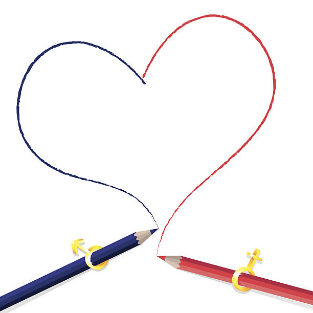 Pencils drawing heart shape vector art illustration