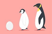 Penguin and egg vector cartoon flat animal illustration isolated on background.