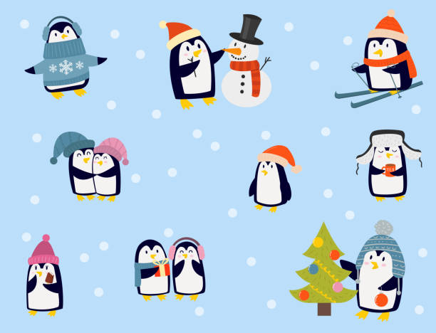 Penguin christmas vector illustration character cartoon funny cute animal antarctica polar beak pole winter bird Penguin christmas vector illustration character. Cartoon funny cute animal isolated. Antarctica polar beak pole winter bird. Funny outdoors wild life south arctic. black white snow scene silhouette stock illustrations