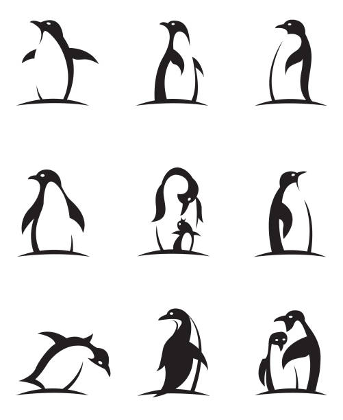 pinguin-icon-set - pinguin stock-grafiken, -clipart, -cartoons und -symbole