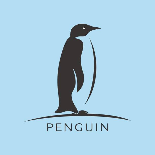 penguin icon vector, flat sign - penguin stock illustrations
