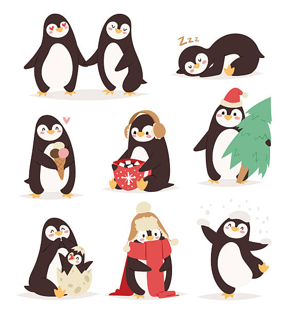 penguin set vector characters - pinguin stock-grafiken, -clipart, -cartoons und -symbole