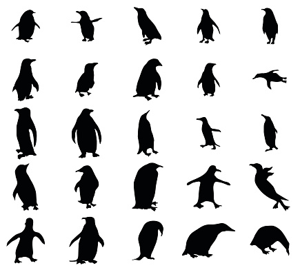 Penguin silhouettes set