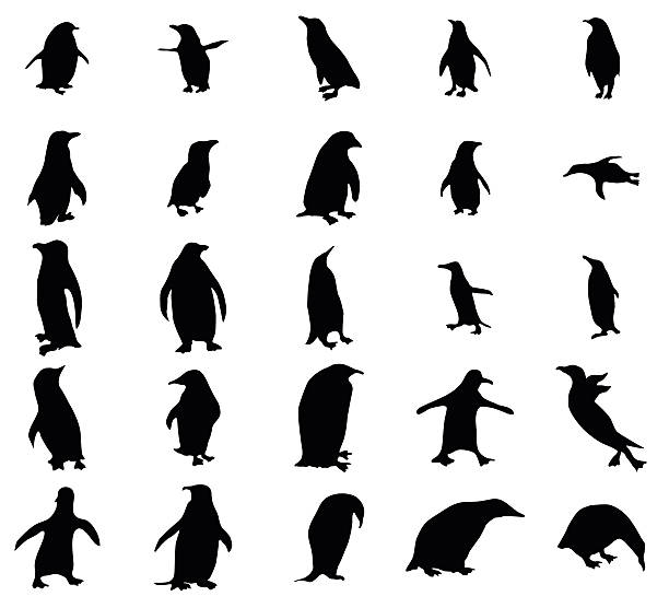 penguin silhouetten set - pinguin stock-grafiken, -clipart, -cartoons und -symbole