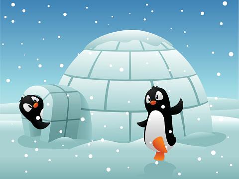 Penguin sweet home