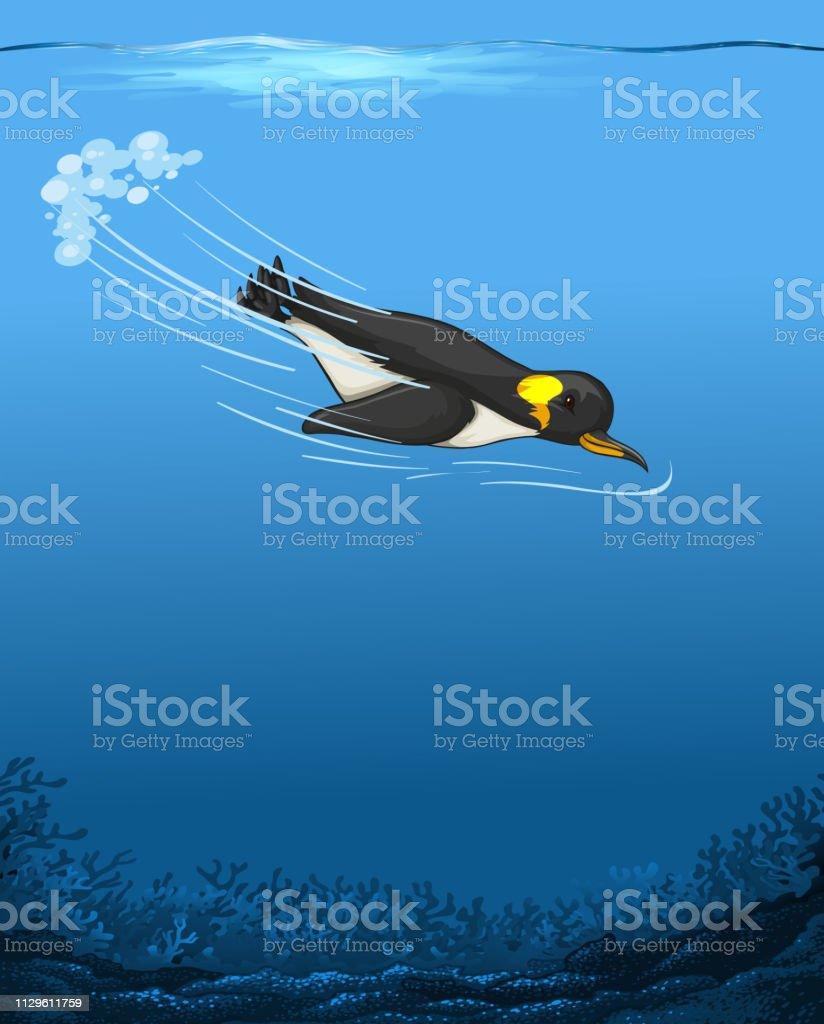 Um pinguim a nadar debaixo de água - ilustração de arte em vetor