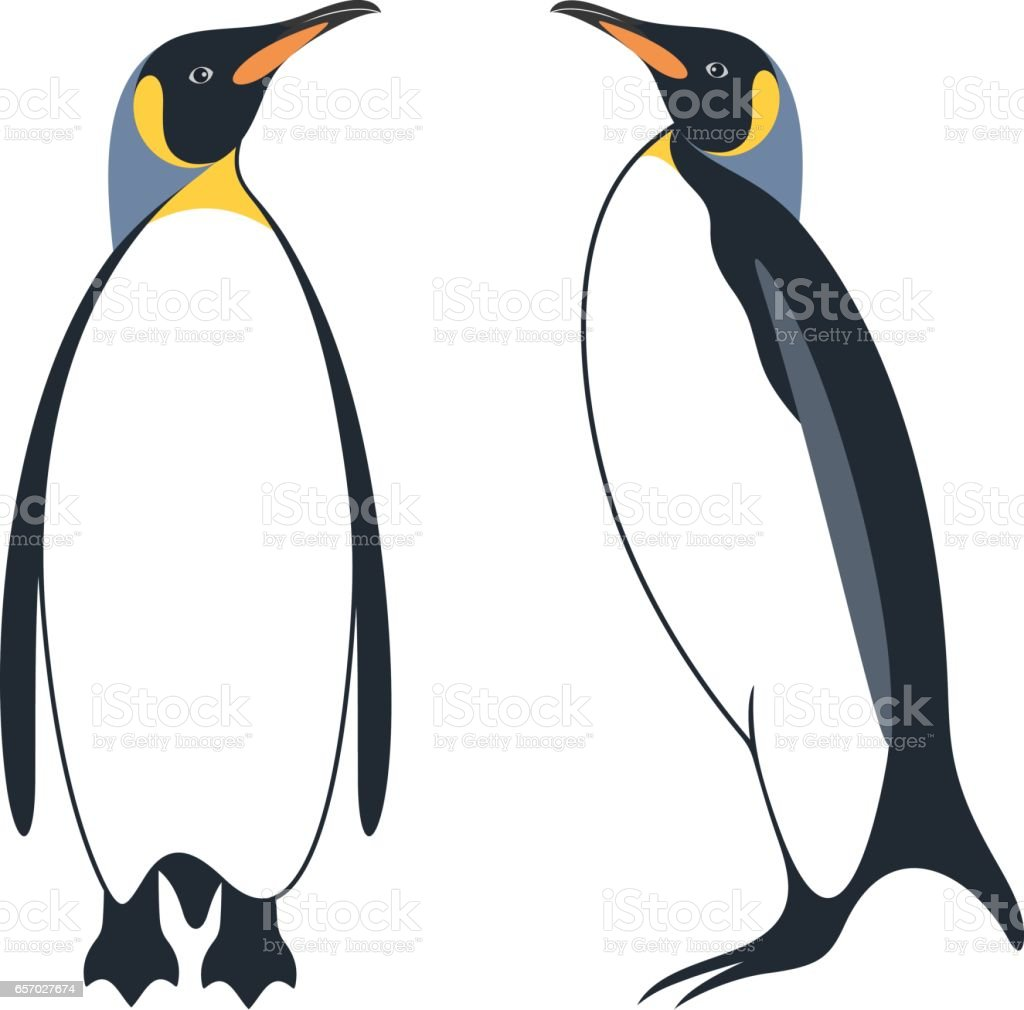 royalty free royal penguins clip art vector images illustrations rh istockphoto com penguin clipart free penguin clip art printable free