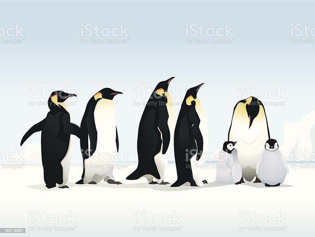 Penguins on ice - Royalty-free Animal stock vector