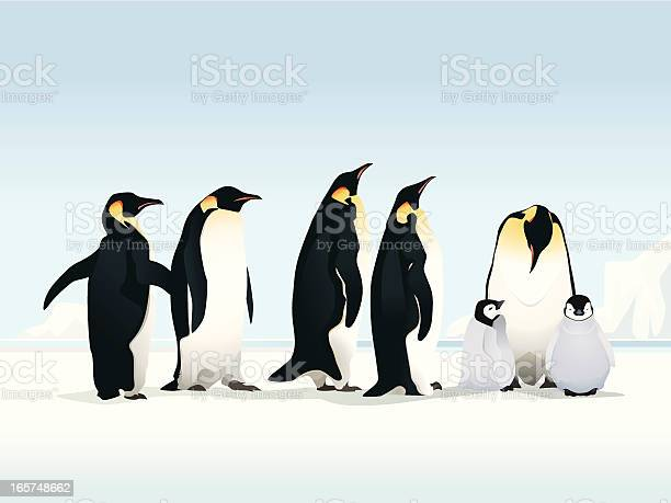 Penguins On Ice Stock Illustration - Download Image Now