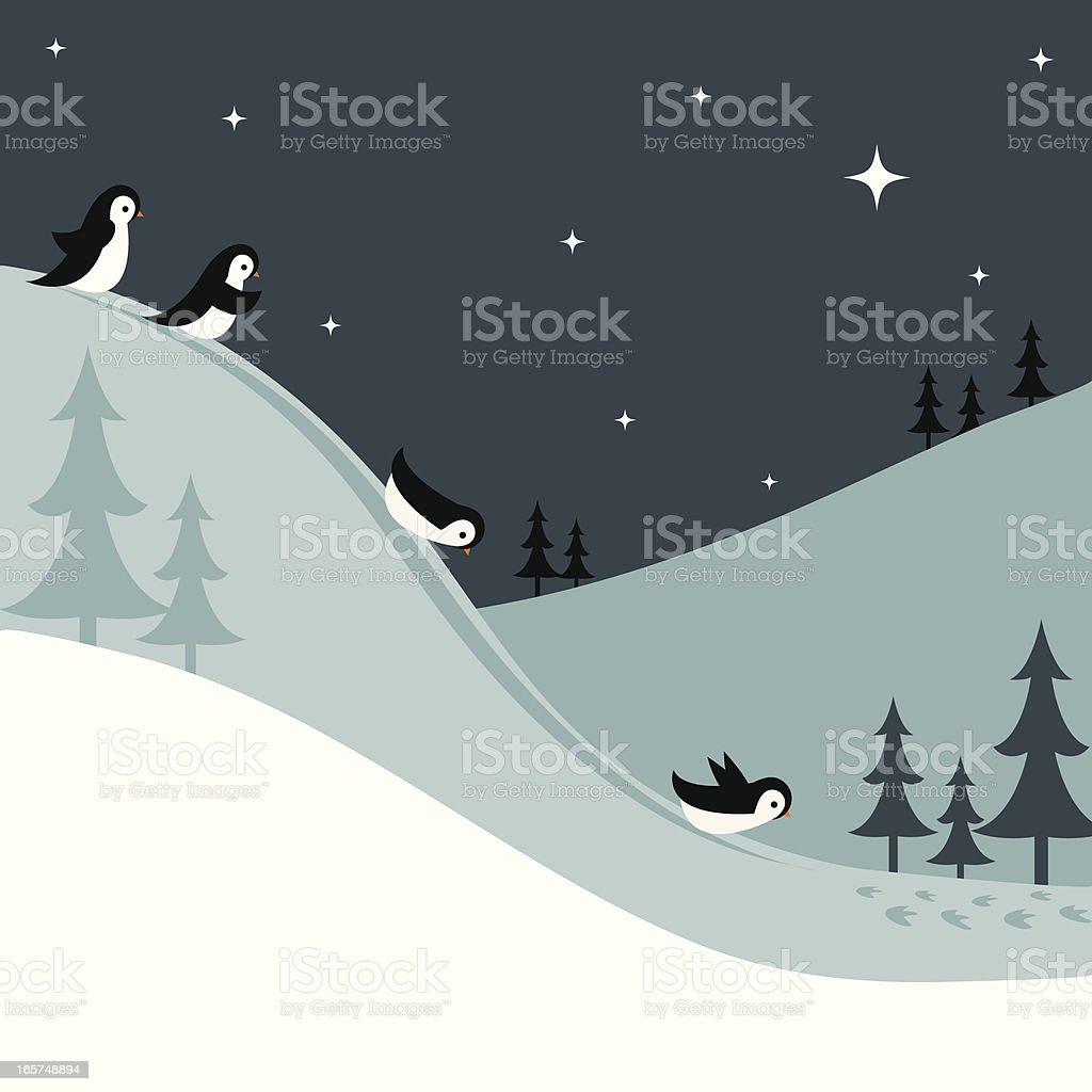 Penguins Sledding Down a Snowy Hill at Night vector art illustration