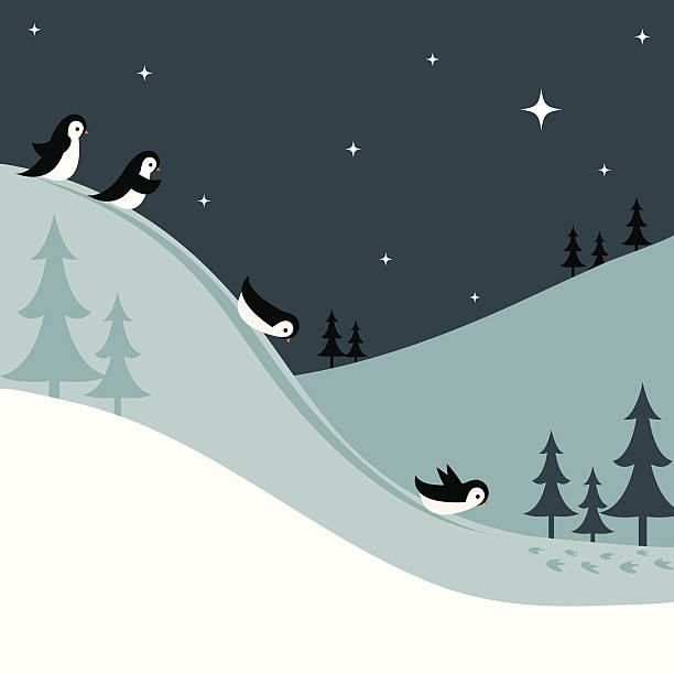 penguins sledding down a snowy hill at night - penguin stock illustrations