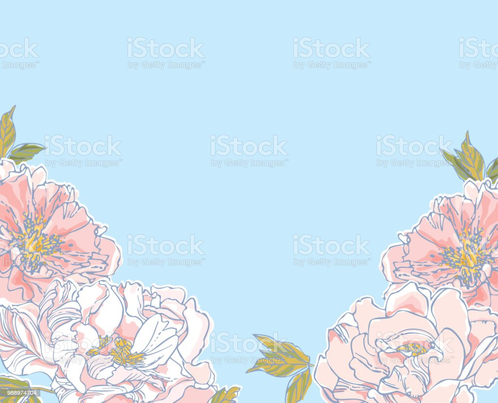Peonies Background vector art illustration