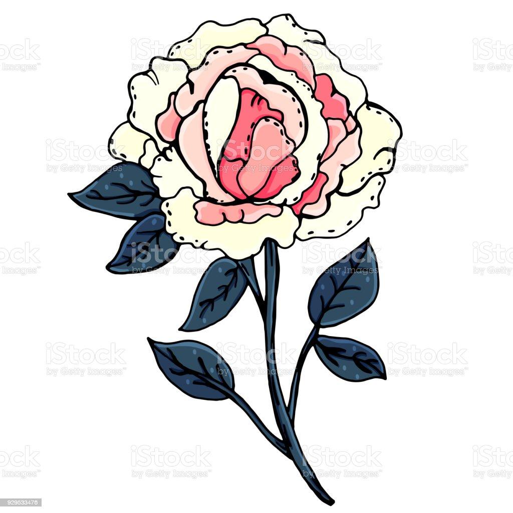 Vetores De Peônias Lindas Flores Desenho Manual Primavera Um