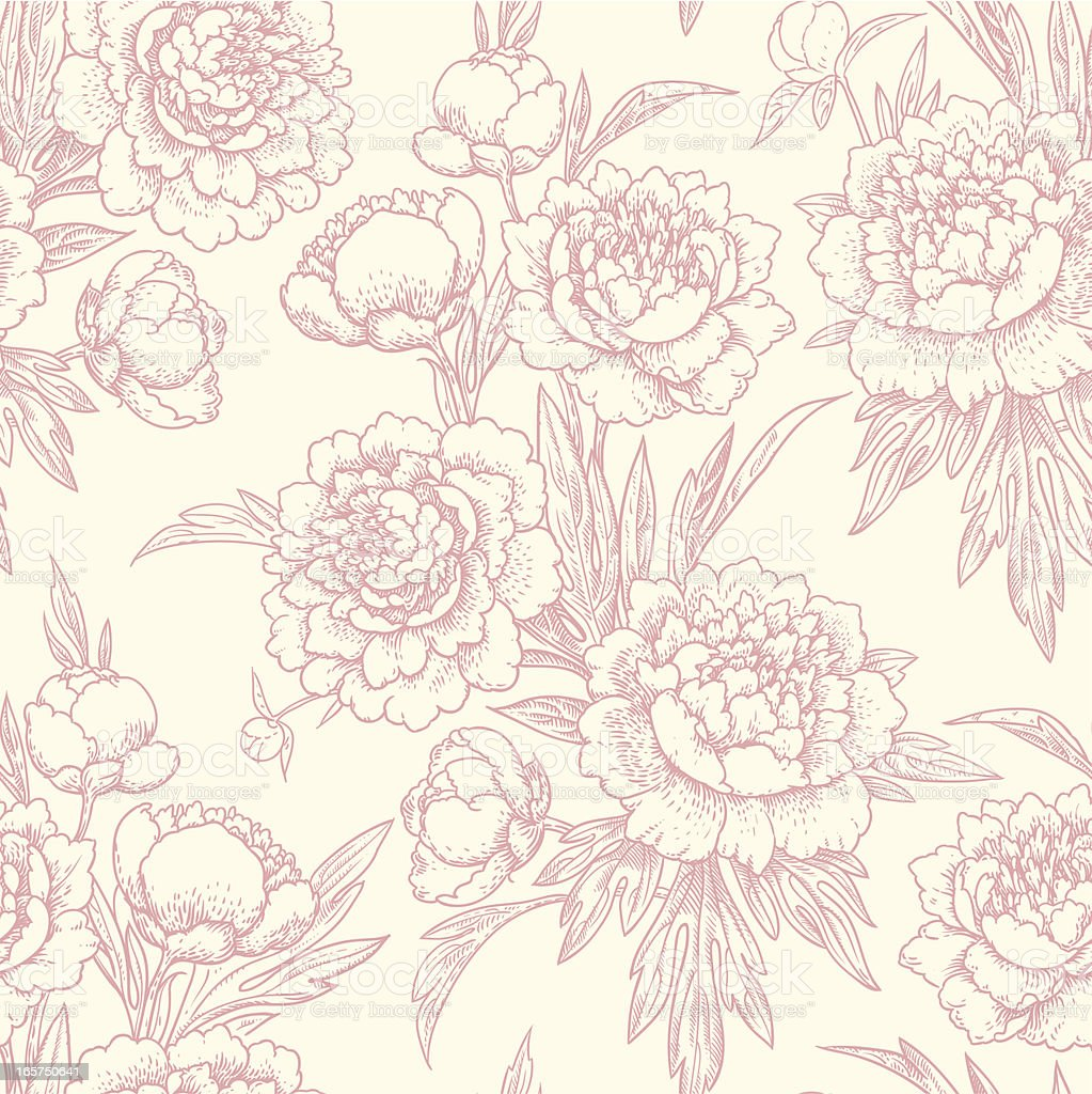 Pivoines motif sans couture. - Illustration vectorielle