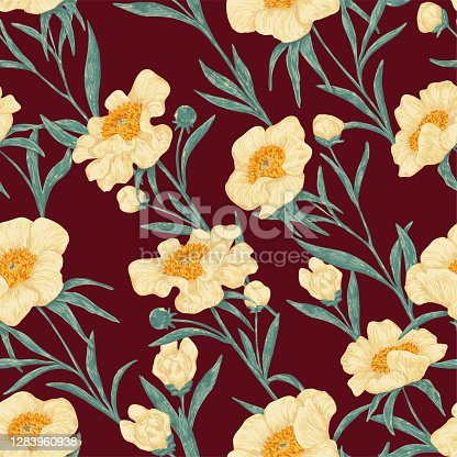 istock Peony Claire de Lune plants seamless pattern. Hand drawn vector illustration. Realistic botanical background. Wildflowers retro sketch. Colored vintage design, print, fabric, textile, wrap, wallpaper. 1283960938
