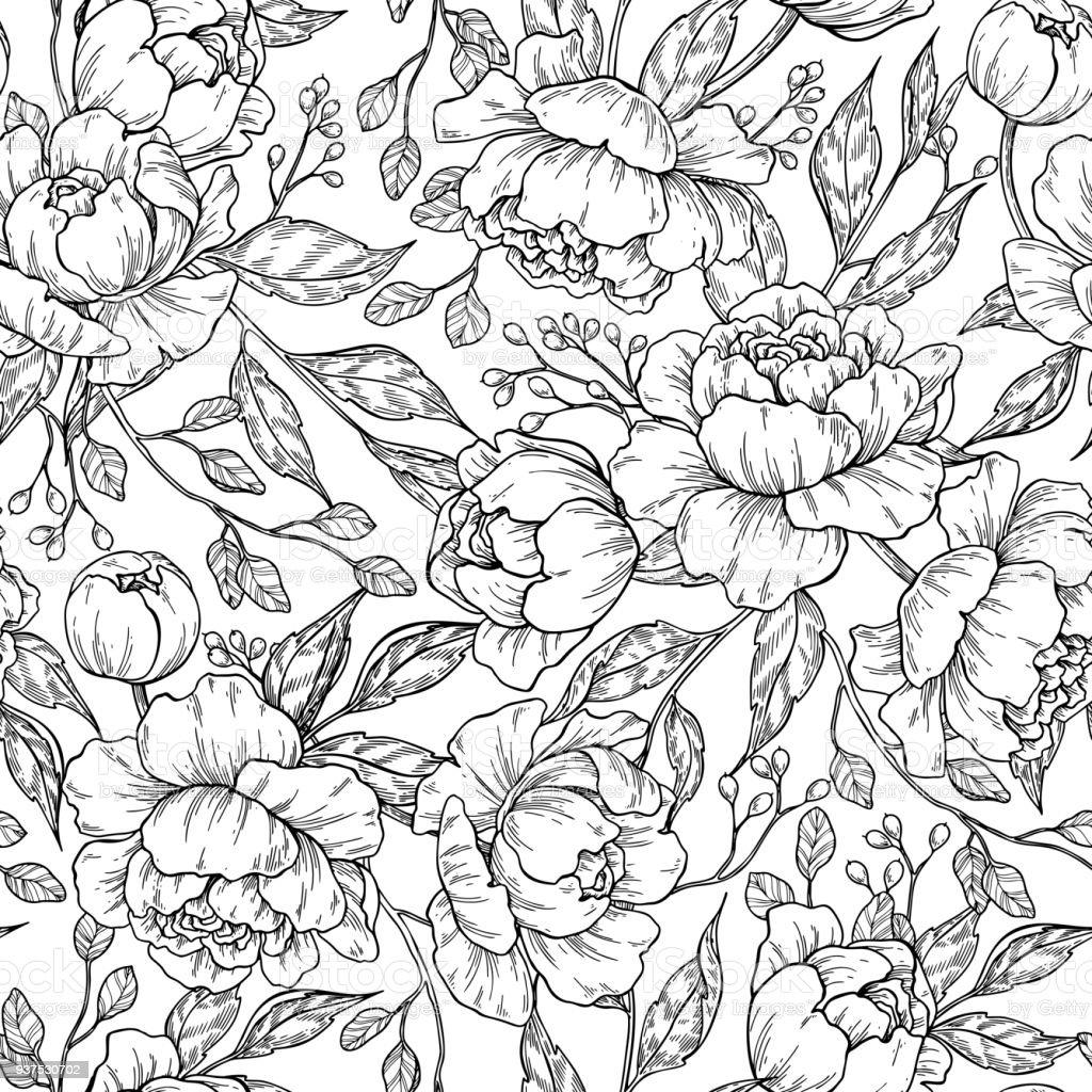 Pfingstrose Blüte Nahtlose Muster Zeichnen Vektor Handgezeichnete