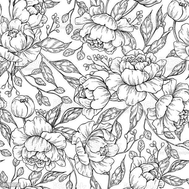 Peony flower seamless pattern drawing vector hand drawn engrave vector id937530702?b=1&k=6&m=937530702&s=612x612&h=o8bgtpcsloloa zek5187ly7mdzetcejdbd0xacocgs=