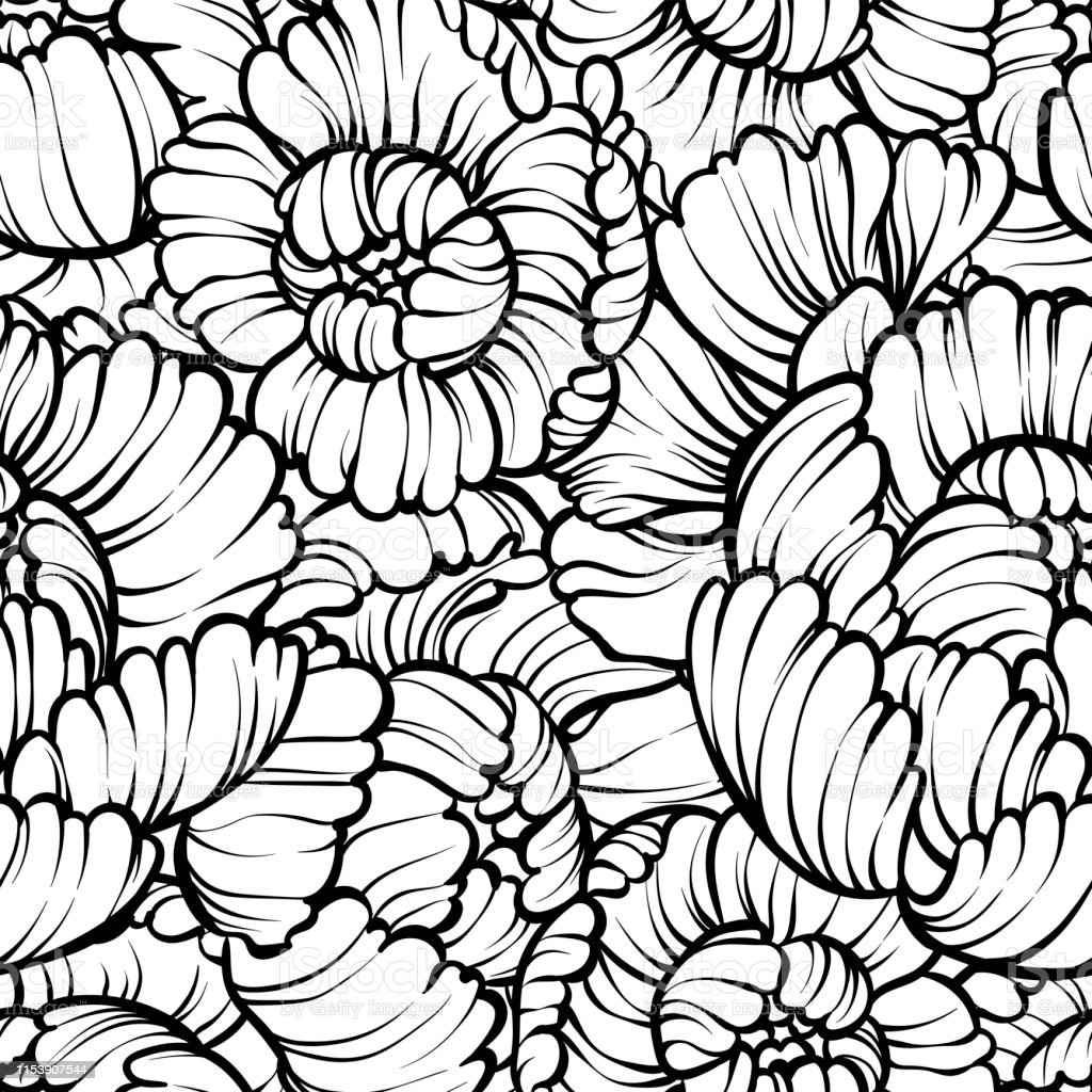 Peony Flower Seamless Pattern Line Drawing Vector Hand Drawn