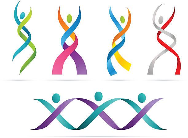 People DNA vector art illustration