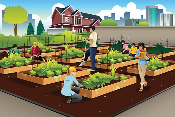 People Doing Community Gardening A vector illustration of people in community doing gardening together urban gardening stock illustrations