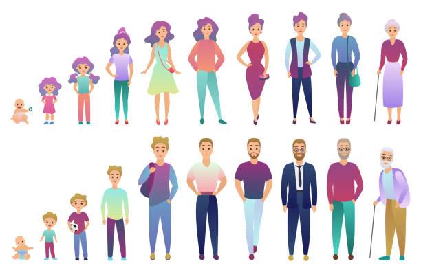 bildbanksillustrationer, clip art samt tecknat material och ikoner med personer manliga och kvinnliga åldrandeprocessen. från barn till äldre person växer in. trendiga fradient färg stil vektorillustration. - age