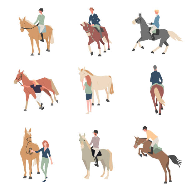 馬に乗って人々。馬のライダー。馬の品種は色フラット アイコン セットです。 - 乗馬点のイラスト素材/クリップアート素材/マンガ素材/アイコン素材