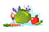 Woman and Man with Cabbage in Hands. Vegetables and Fruits. Grow Organic Vegetables. Vector Illustration. Healthy Food. Natural Products. Organic Production. Healthy Lifestyle. Ripe Fruits.