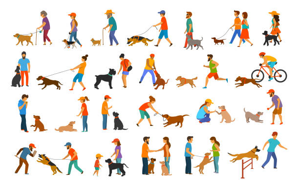 people with dogs graphic collection people with dogs graphic collection.man woman training their pets basic obedience commands like sit lay give paw walk close, exercising run jump barrier, protection, running playing and walking,teaching isolated vector illustration scenes set dog stock illustrations