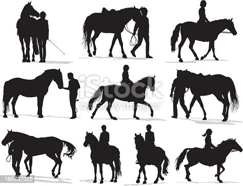 Set of detailed vector silhouettes of people handling/leading horses and riding horseback.