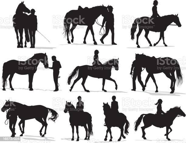 People with horses silhouette set vector id165737025?b=1&k=6&m=165737025&s=612x612&h=hlmz4od0djral8uqshkklntipzurf4lcdmgd7mgzaco=