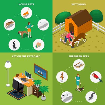 people with pets isometric 2x2