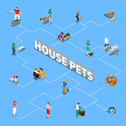 people with pets isometric flowchart