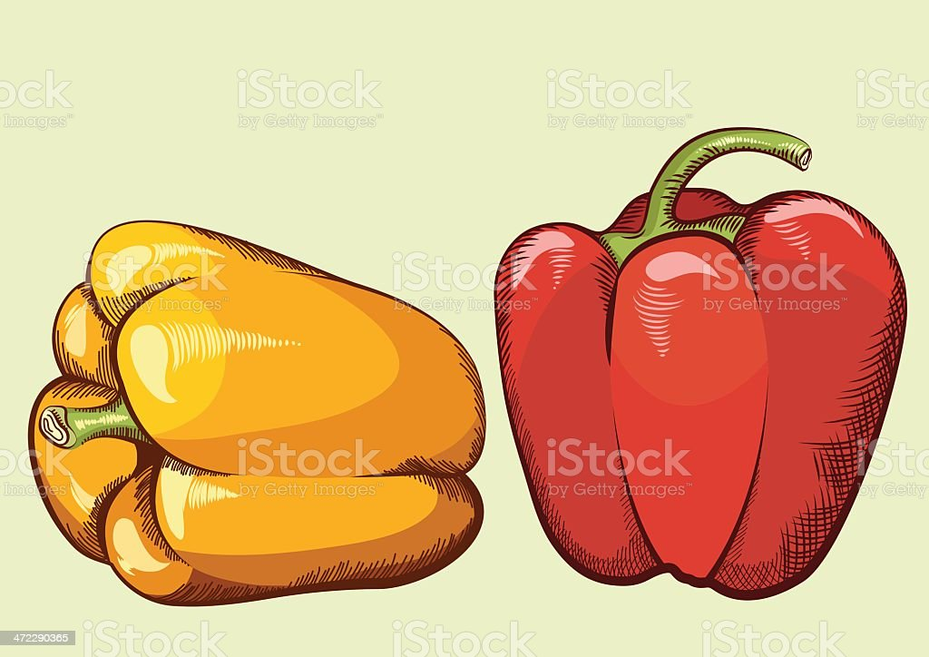 Peppers royalty-free stock vector art