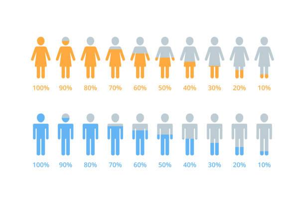 ilustraciones, imágenes clip art, dibujos animados e iconos de stock de porcentaje de infografía vectorial de mujeres y hombres - infografías demográficas
