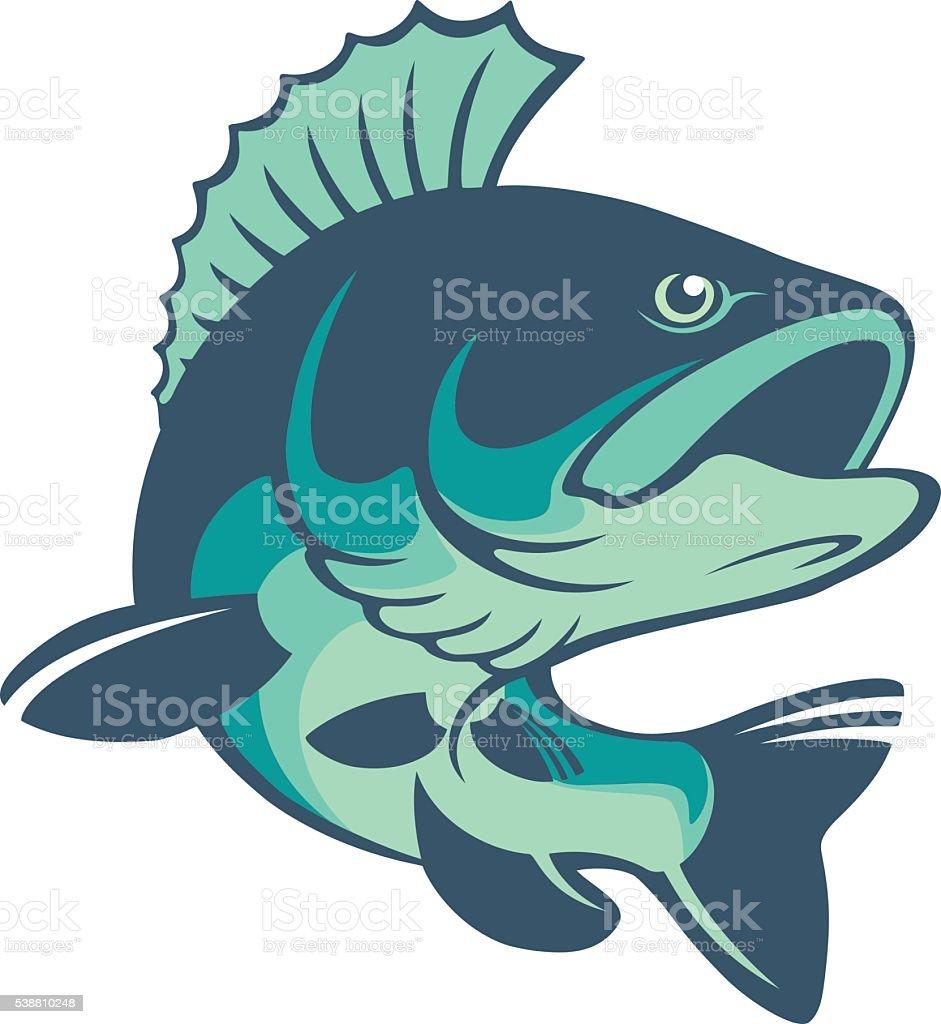 perch fish vector art illustration