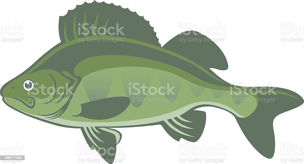 perch vector art illustration