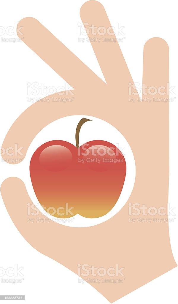 Perfect apple vector art illustration