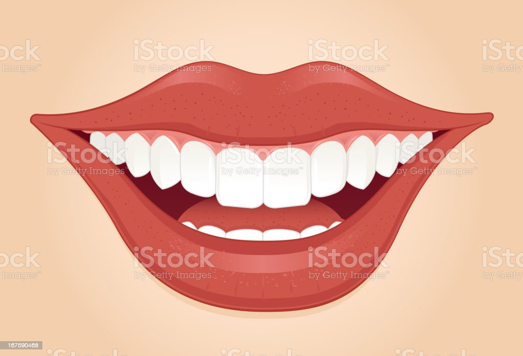 Perfect smile vector art illustration