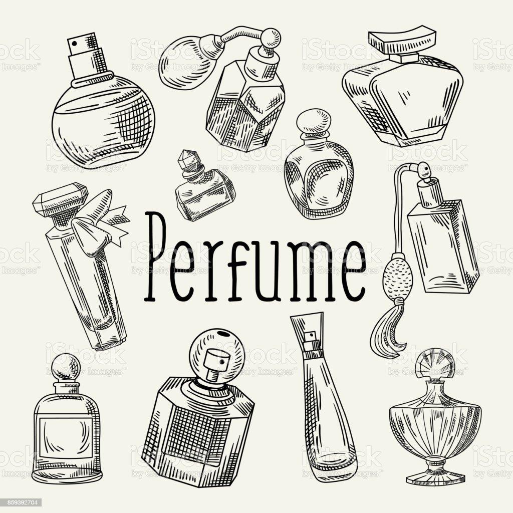 Mão desenhada Doodle de frascos de perfume. Aroma francês. Croqui do salão de beleza de mulher - ilustração de arte em vetor