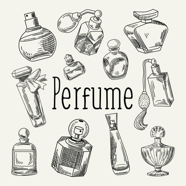 illustrazioni stock, clip art, cartoni animati e icone di tendenza di perfume bottles hand drawn doodle. french aroma. woman beauty shop sketch - profumi spray