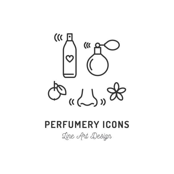 perfumery icons. perfume, deodorant, smelling and smell, nose. thin line art design, vector outline illustration - nos stock illustrations