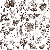 Perfumery ingredients vintage background