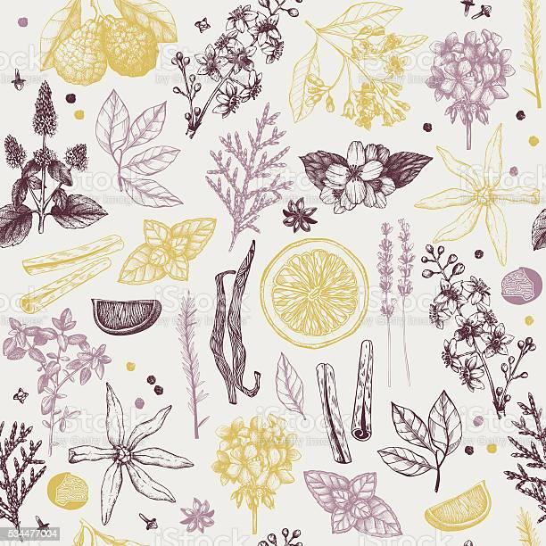 Perfumery ingredients vintage background vector id534477004?b=1&k=6&m=534477004&s=612x612&h=ki7k q5cny5geakj vcyi5oiegsf9ybxvtly20pbhjo=