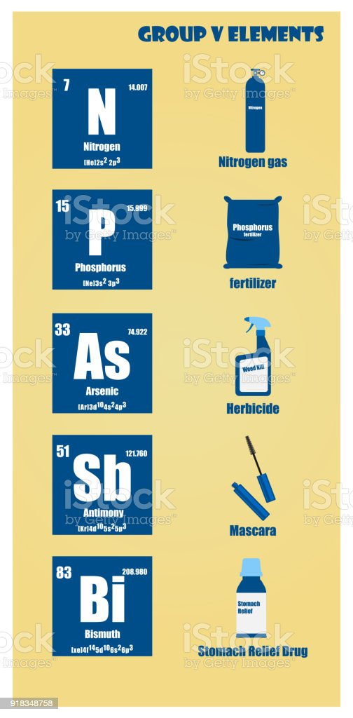 Periodic Table what family does arsenic belong to on the periodic table : Periodic Table Of Element Group V stock vector art 918348758 | iStock