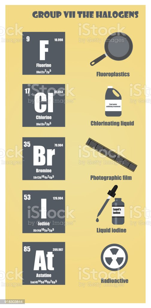periodic table of element group vii the halogens royalty free periodic table of element group - Periodic Table Halogens