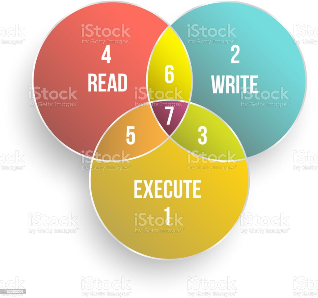 Permission diagram for Allow READ WRITE EXECUTE. vector art illustration